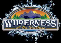 Wilderness in the Smokies Resort